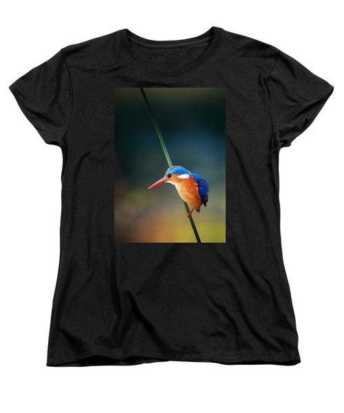 Malachite Kingfisher Women's T-Shirt (Standard Cut) by Johan Swanepoel