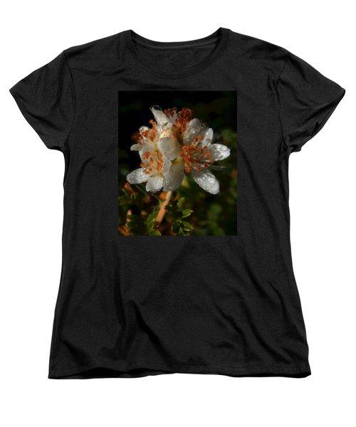 Morning Dew Women's T-Shirt (Standard Cut) by Pamela Walton