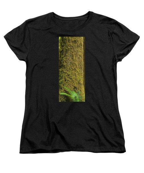 Moss Covered Tree Olympic National Park Women's T-Shirt (Standard Cut) by Steve Gadomski