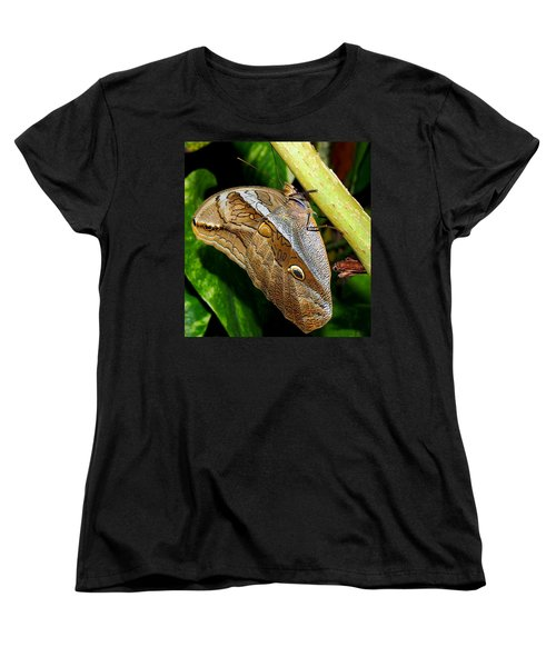 Women's T-Shirt (Standard Cut) featuring the photograph Mournful Owl Butterfly by Amy McDaniel