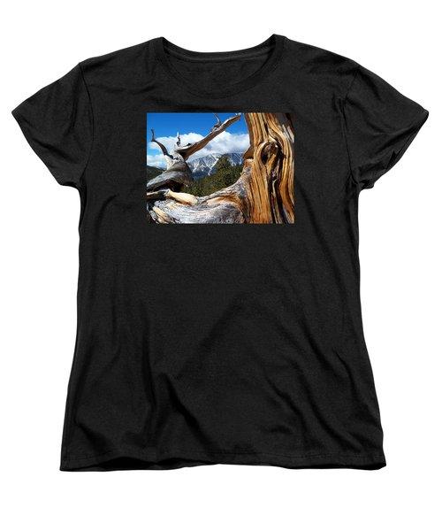 Mt. Charleston Thru A Tree Women's T-Shirt (Standard Cut) by Alan Socolik
