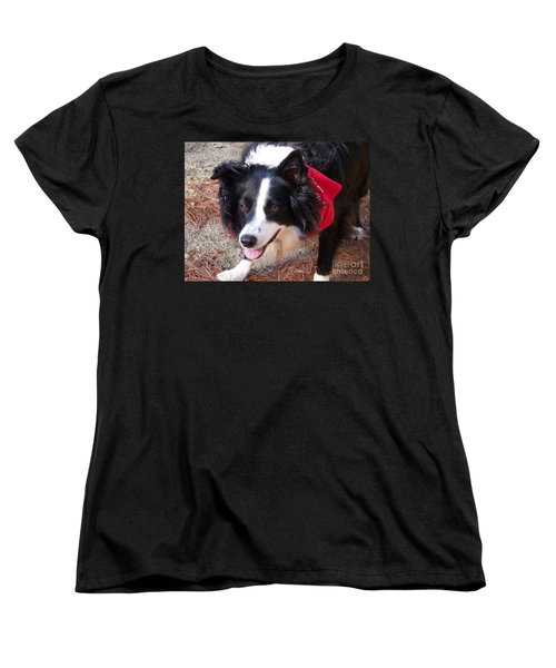 Female Border Collie Women's T-Shirt (Standard Cut) by Eunice Miller
