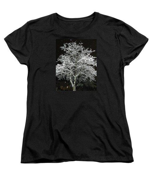 Mystical Winter Beauty Women's T-Shirt (Standard Cut) by Emmy Marie Vickers