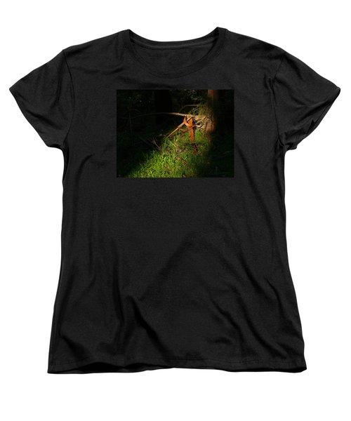 Natural Bands 2 Women's T-Shirt (Standard Cut) by Evelyn Tambour