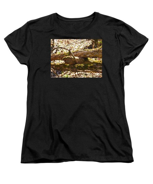 Women's T-Shirt (Standard Cut) featuring the photograph Natures Fence by Nick Kirby
