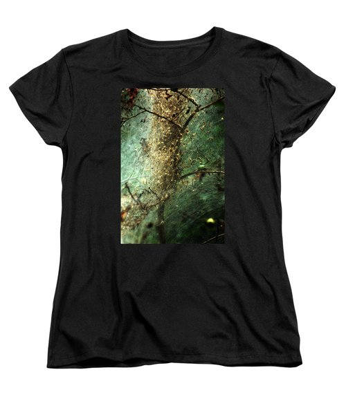 Natures Past Captured In A Web Women's T-Shirt (Standard Cut) by Kim Pate