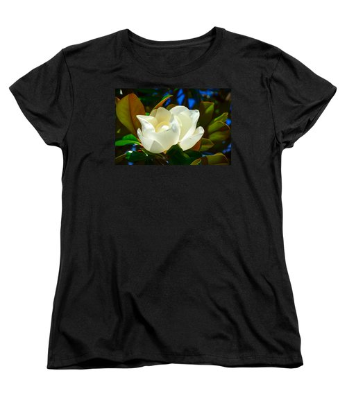 Oh Sweet Magnolia Women's T-Shirt (Standard Cut) by Debra Martz