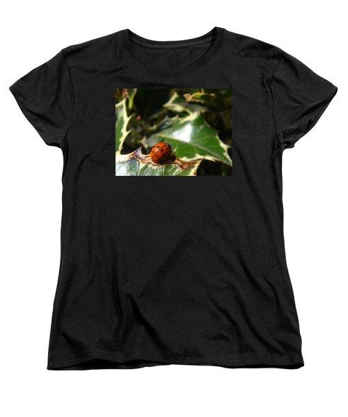 On The Edge Women's T-Shirt (Standard Cut) by Cheryl Hoyle
