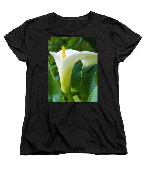 Open Your Heart Women's T-Shirt (Standard Cut) by Tiffany Erdman