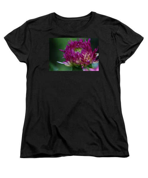 Opening Day Women's T-Shirt (Standard Cut) by Denyse Duhaime