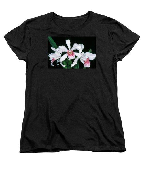 Orchid 10 Women's T-Shirt (Standard Cut) by Andy Shomock