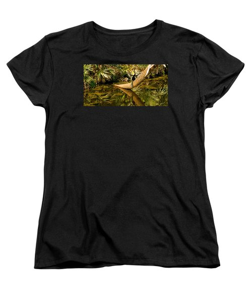 Oriental Darter Anhinga Melanogaster Women's T-Shirt (Standard Cut) by Panoramic Images