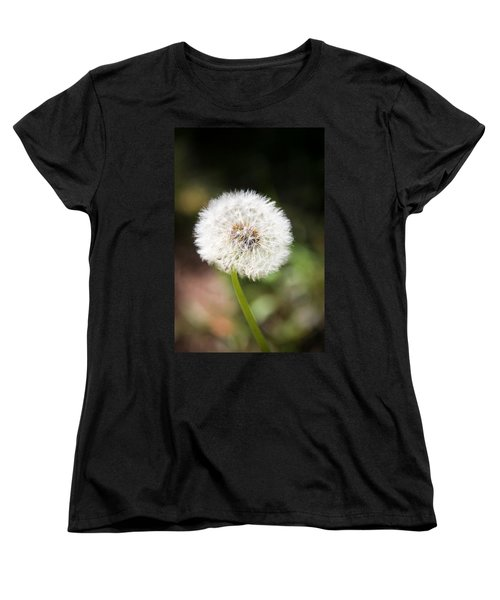 Women's T-Shirt (Standard Cut) featuring the photograph Overlooked  by Aaron Berg
