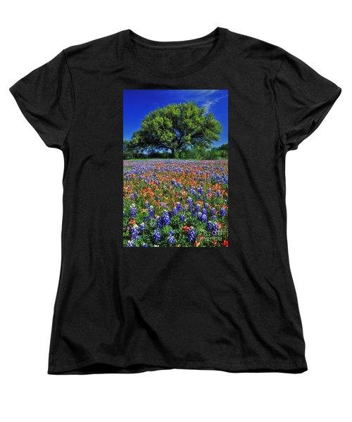 Paintbrush And Bluebonnets - Fs000057 Women's T-Shirt (Standard Cut) by Daniel Dempster