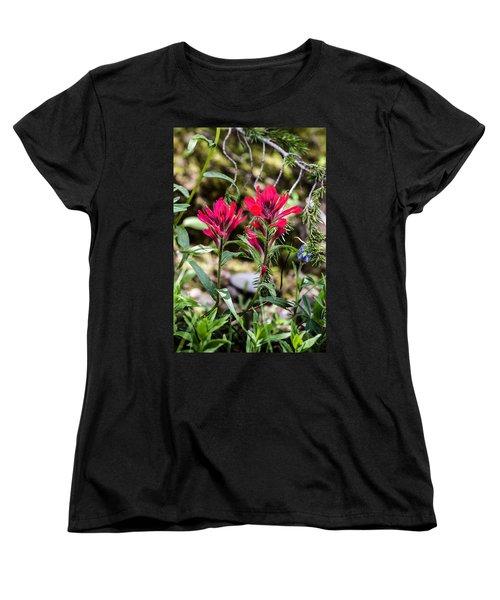 Paintbrush Women's T-Shirt (Standard Cut)