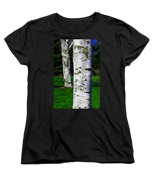 Black And White Women's T-Shirt (Standard Cut) featuring the photograph Paper Birch Trees by Aaron Berg