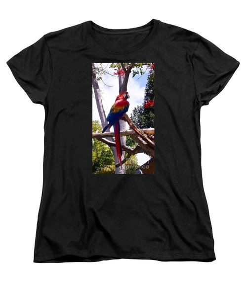 Women's T-Shirt (Standard Cut) featuring the photograph Parrot by Susan Garren