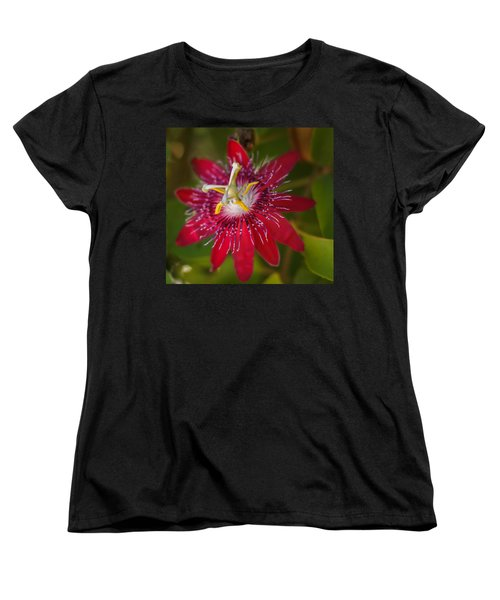 Women's T-Shirt (Standard Cut) featuring the photograph Passion Flower by Jane Luxton