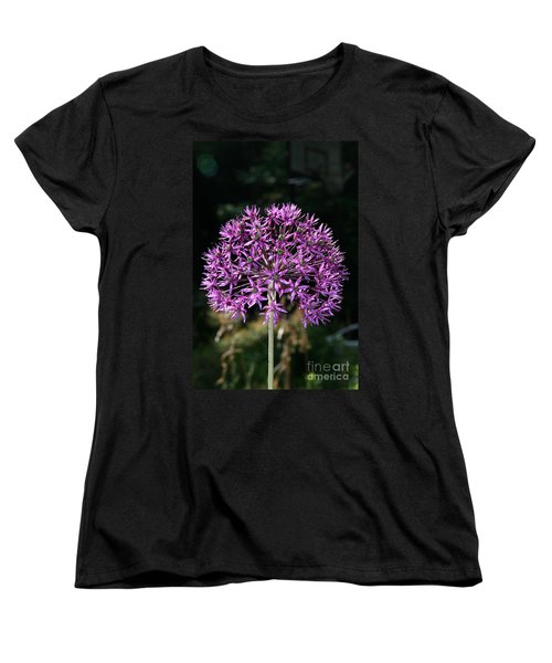 Passion No.2 Women's T-Shirt (Standard Cut) by Neal Eslinger