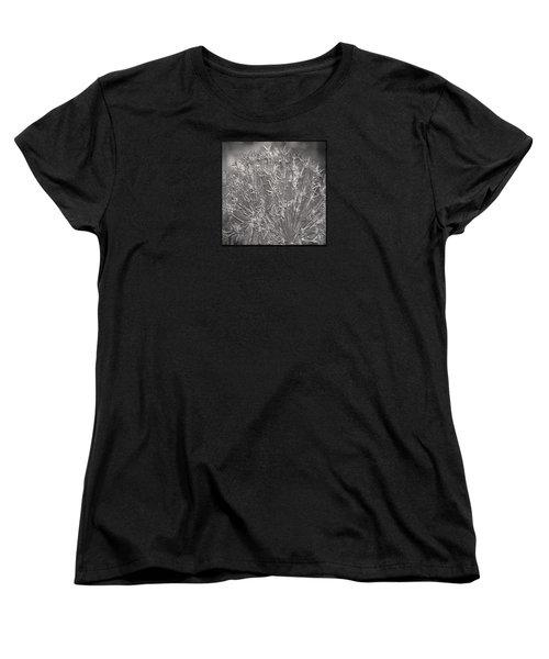 Women's T-Shirt (Standard Cut) featuring the photograph Persian Stars by Jean OKeeffe Macro Abundance Art