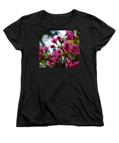 Pink Cherry Blossoms Women's T-Shirt (Standard Cut) by Pamela Walton