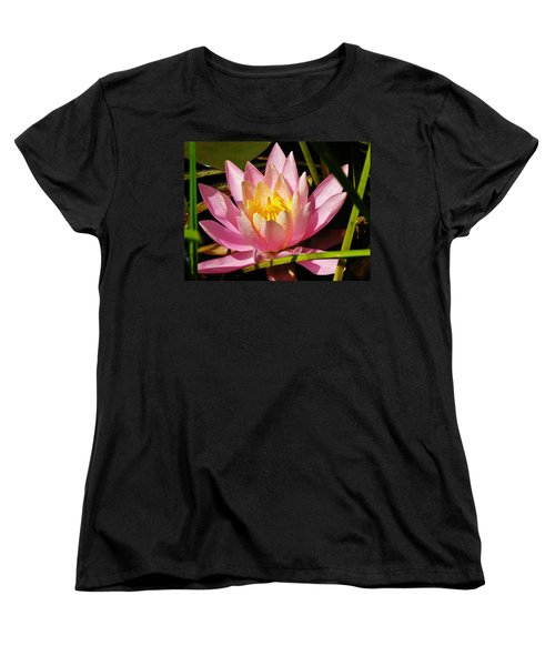 Pink Water Lily Women's T-Shirt (Standard Cut) by Sherman Perry