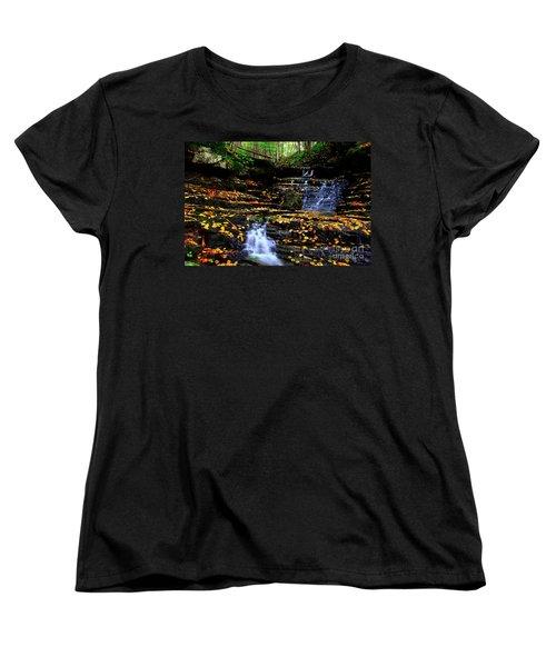 Pipestem Beauty Women's T-Shirt (Standard Cut)