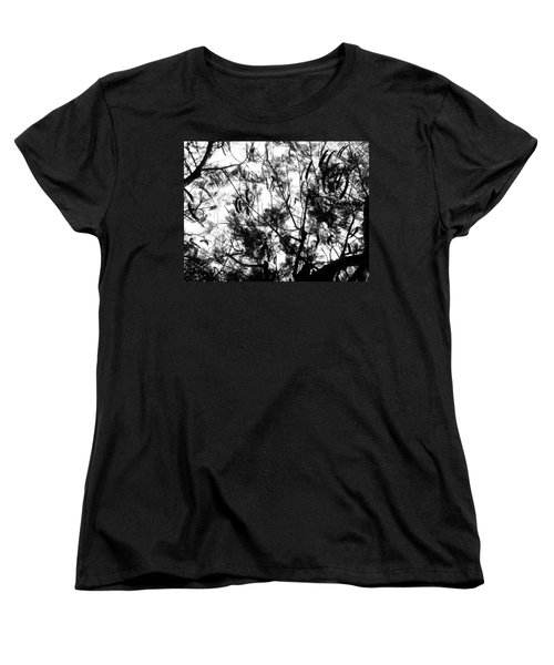 Women's T-Shirt (Standard Cut) featuring the photograph Poinciana Lace by Amar Sheow