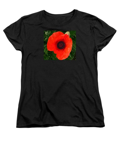 Women's T-Shirt (Standard Cut) featuring the photograph Poppy Of Remembrance  by Sharon Duguay