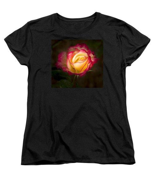 Portrait Of A Double Delight Rose Women's T-Shirt (Standard Cut) by Jean Noren