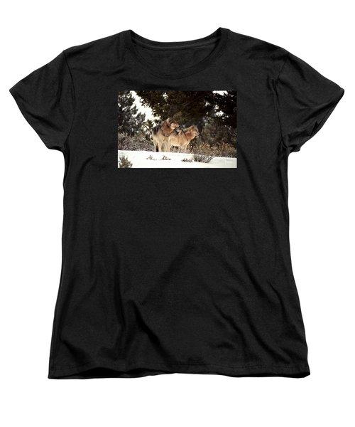 Women's T-Shirt (Standard Cut) featuring the photograph Predators by Sharon Elliott