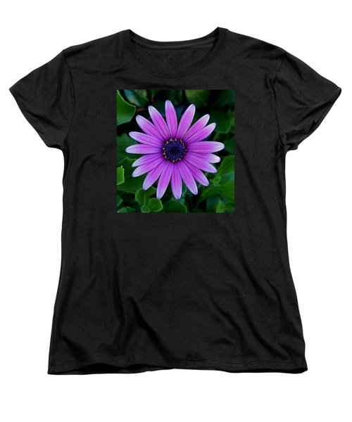 Purple Flower Women's T-Shirt (Standard Cut) by Pamela Walton