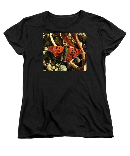 Women's T-Shirt (Standard Cut) featuring the photograph Question Mark Butterfly by Donna Brown
