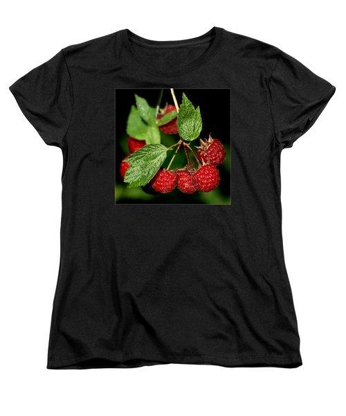 Raspberries Women's T-Shirt (Standard Cut) by Nikolyn McDonald