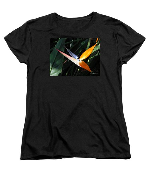 Women's T-Shirt (Standard Cut) featuring the photograph Ray Of Light by David Lawson