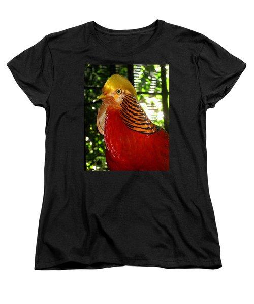 Red Bird Women's T-Shirt (Standard Cut) by Pamela Walton