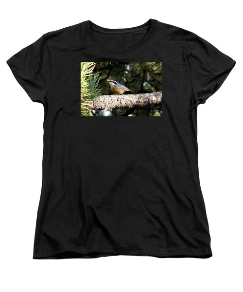 Red-breasted Nuthatch In Pine Tree Women's T-Shirt (Standard Cut) by Marilyn Burton