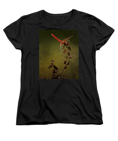 Red Dragonfly On A Dead Plant Women's T-Shirt (Standard Cut) by Belinda Greb