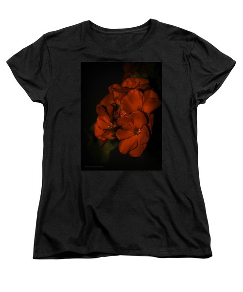 Women's T-Shirt (Standard Cut) featuring the photograph Red Flowers In Evening Light by Lucinda Walter
