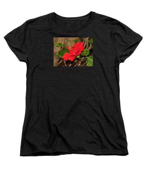 Red Hibiscus Flower Women's T-Shirt (Standard Cut) by Cynthia Guinn