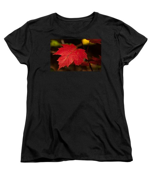 Red Maple Leaf In Fall Women's T-Shirt (Standard Cut) by Brenda Jacobs