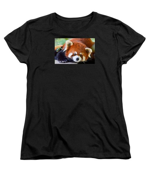 Red Panda Women's T-Shirt (Standard Cut) by Michael Hubley