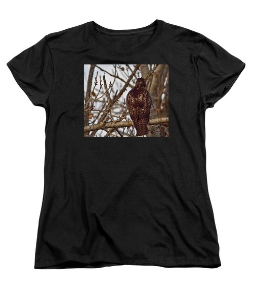 Women's T-Shirt (Standard Cut) featuring the photograph Red Tail Hawk by Brian Williamson