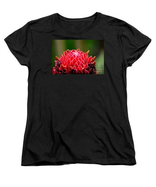 Red Torch Ginger Flower Head From Tropics Singapore Women's T-Shirt (Standard Cut) by Imran Ahmed