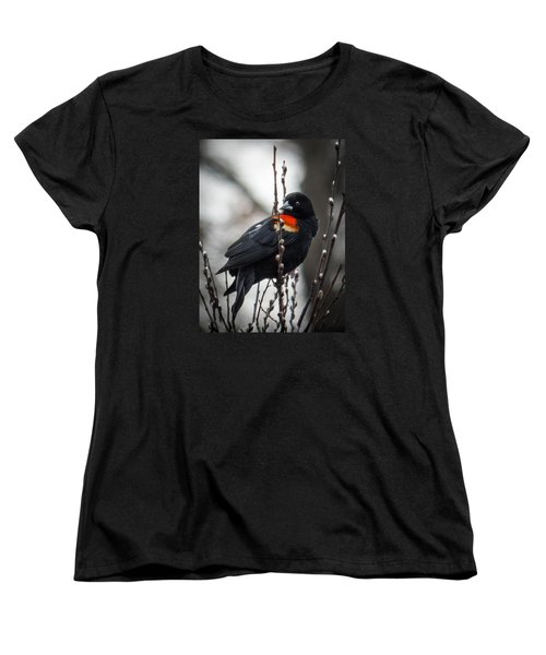 Women's T-Shirt (Standard Cut) featuring the photograph Red Winged Blackbird In Pussy Willows by Patti Deters