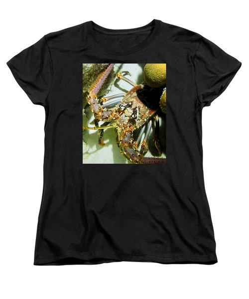 Women's T-Shirt (Standard Cut) featuring the photograph Reef Lobster Close Up Spotlight by Amy McDaniel