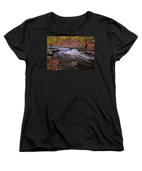 River Of Color Women's T-Shirt (Standard Cut) by Dave Mills