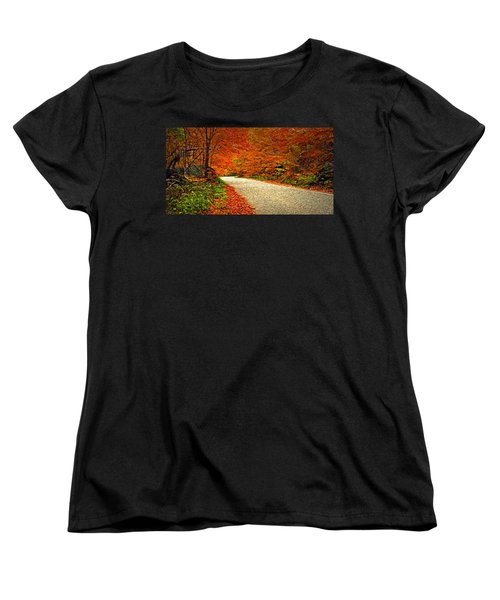 Road To Nowhere Women's T-Shirt (Standard Cut) by Bill Howard