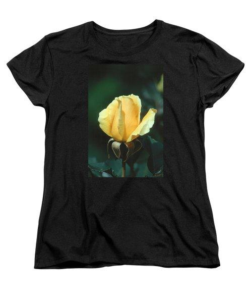 Rose 2 Women's T-Shirt (Standard Cut) by Andy Shomock