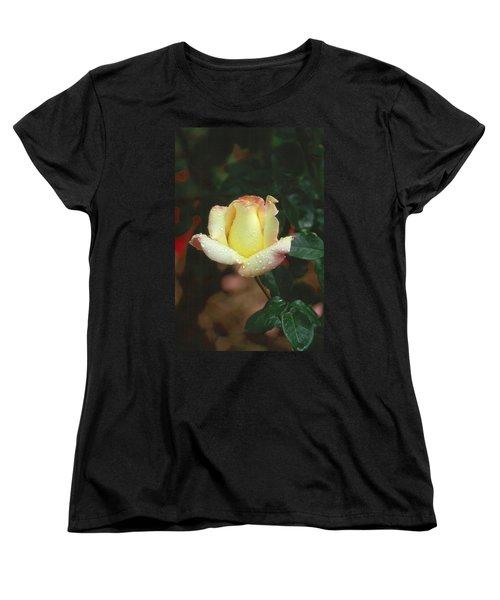 Rose 3 Women's T-Shirt (Standard Cut) by Andy Shomock